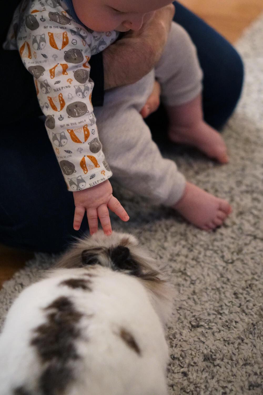 Baby mit Kaninchen Ostern