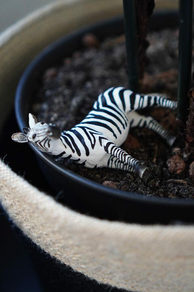 Zebra Spielzeugzebra Schleich Blumentopf